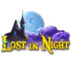 Lade das Flash-Spiel Lost in Night kostenlos runter